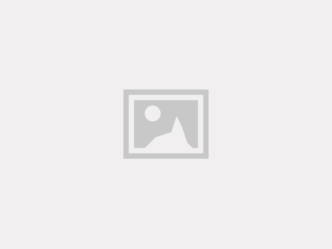 Ryobi Flange Beställningsvara